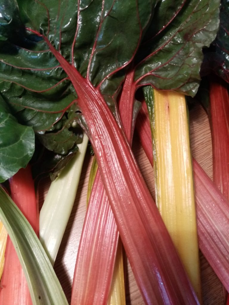 tallos de verduras de color rojo, amarillo, hojas verdes brillantes